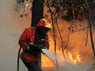 3956848154-cerca-800-bomberos-siguen-luchando-incendios-portugal