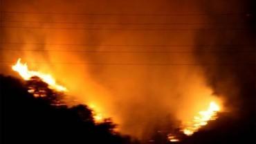 5 Incendios en Los Pirineos Catalanes y Aragoneses Devastan más de 1.500 Hectáreas.