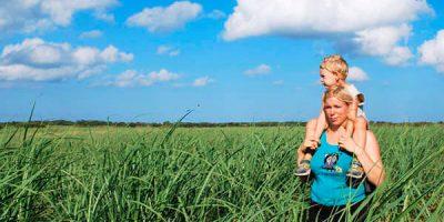 Las consecuencias del uso del etanol como energía alternativa